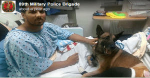 Soldier and dog are heroes