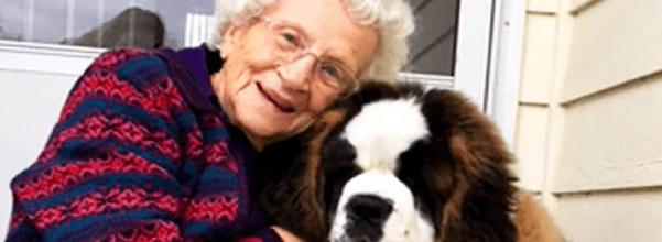 widow bonds with new puppy