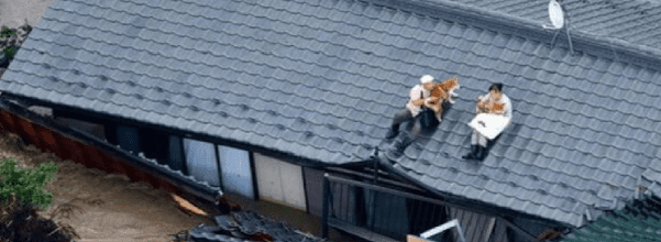 rooftop flood rescue of dogs
