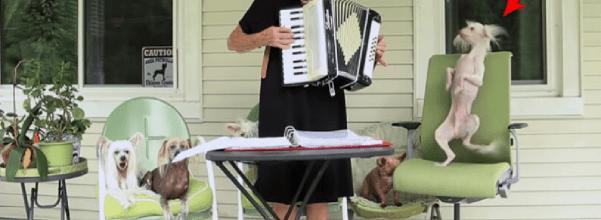 Dog dances to grandma's accordion