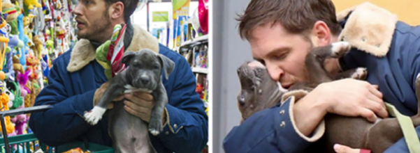 Tom Hardy and puppies