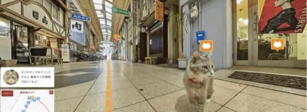 Japan's cat street view