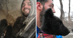 traveler brings home puppies
