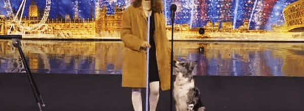 performance with dog and broom