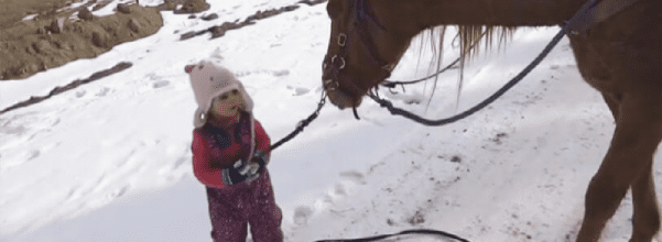 toddler and horse are best friends