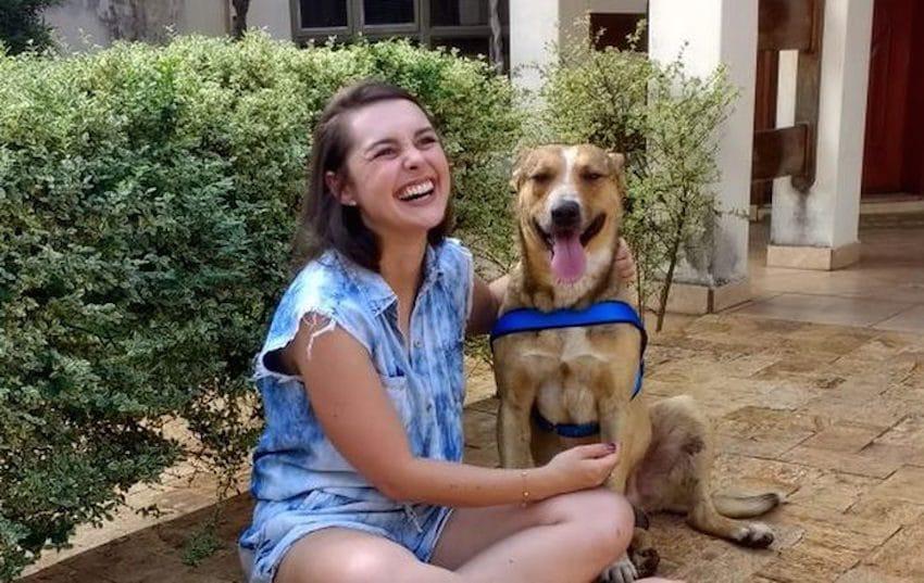 stray dog vows