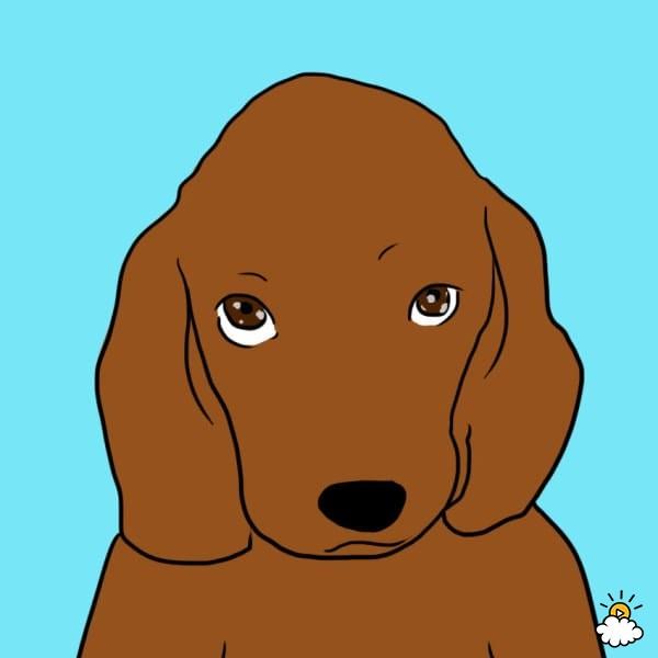 secret dog i love you