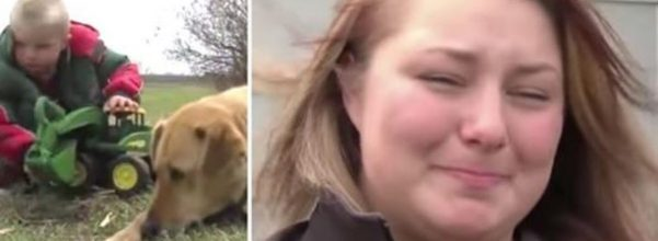 carson urness dog rescue