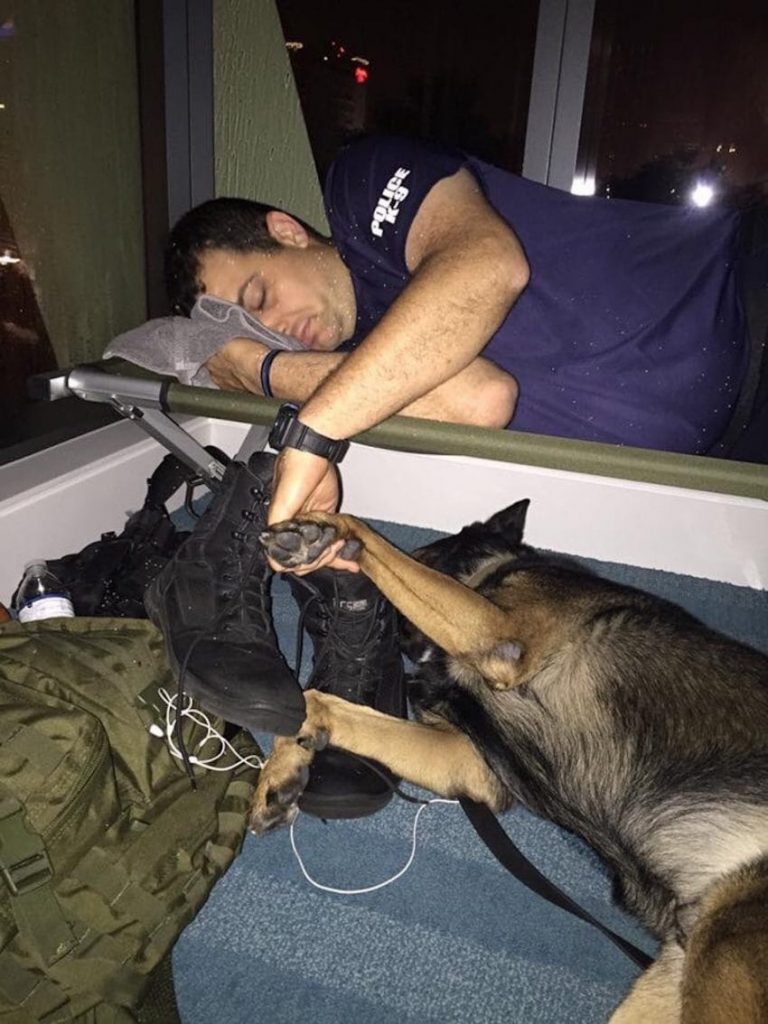 k9 officer holding hands with dog
