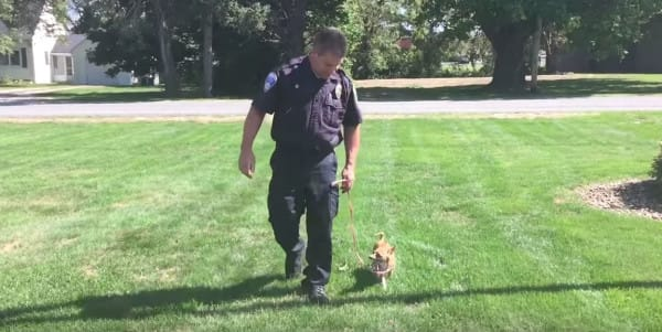 police officer adopts dog