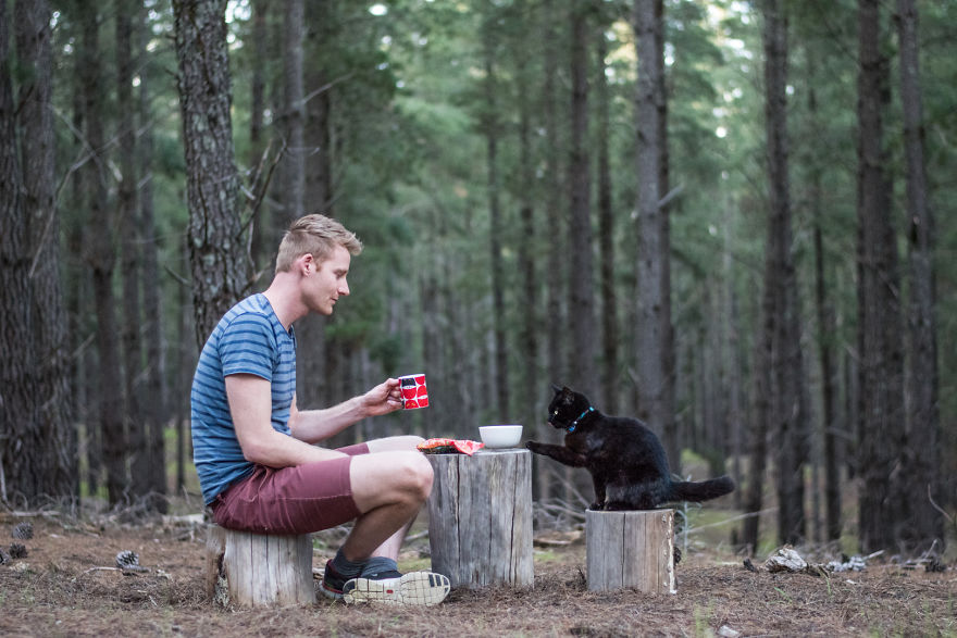 man travels with cat